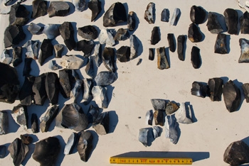 Flint artefacts recovered from Helnaes Bay